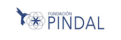FUNDACION PINDAL